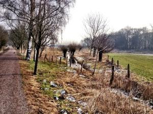 Die Riethbenden im Winter...