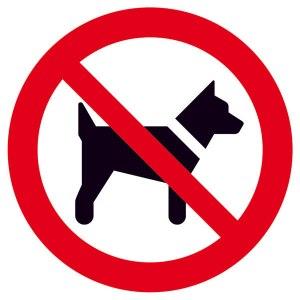 Weg. Einfach weg. Bitte führen Sie Ihren Hund an einer vielbefahrenen Straße (>Autobahn) aus. In der freien Natur hat er nichts zu suchen...