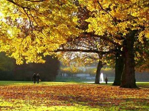 Der Schönwasserpark im Herbst.  Foto: Stadt Krefeld, Presse und Kommunikation
