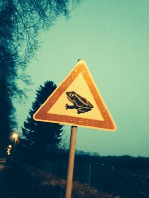 Achtung: Die Amphibien kommen wieder