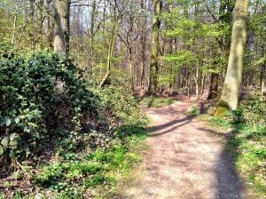 Einer der vielen kleinen Wege über den Hülser Berg.