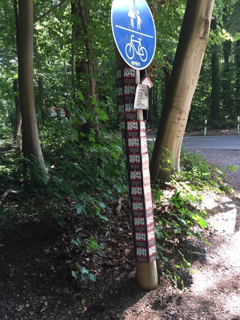 Der SCR2015-Baum im Forstwald.