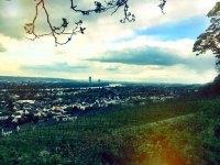 Blick nach Bonn.